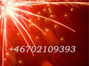 Telefonnummer till Barbro